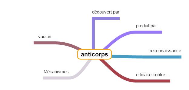 Carte mentale anticorps 1